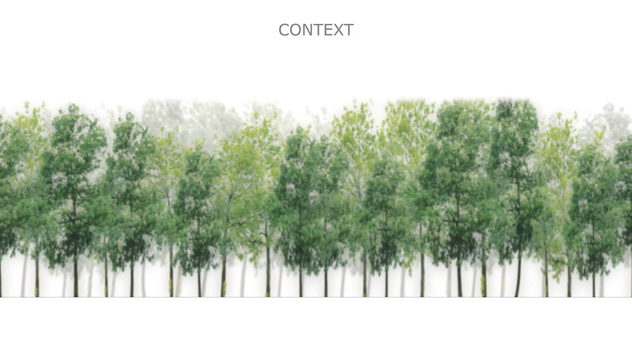 forest as context