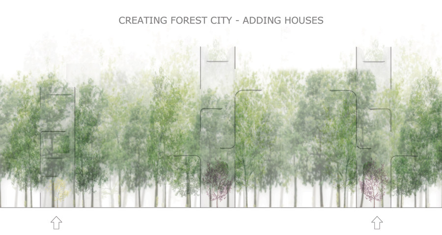 creating forest city