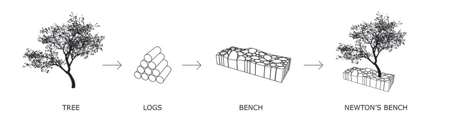 development of Newton's bench